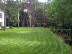 Prace porządkowe ogrodów