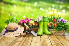 Dom i ogród – duma każdego człowieka